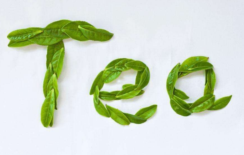 茶叶公司经营范围包括哪些?